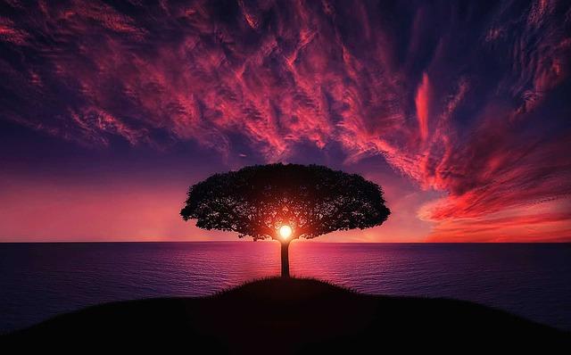 波長の低い自然霊を祓って、霊格の高い自然霊を味方につける。