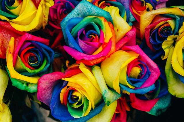 当たるオーラ鑑定と、色別のオーラの意味、性格、生き方、恋愛。